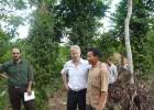 Chuyên gia FAO trao đổi với nhà vườn Tiên Phước