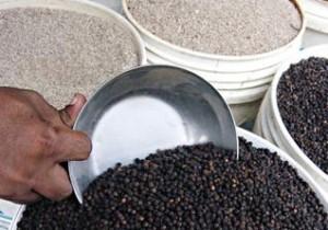 Thị trường tiêu Ấn Độ: Giá nội địa ổn định, giá xuất khẩu tăng nhẹ