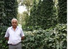 Karnataka xen canh tieu
